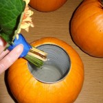 Pumpkin Vase - Easy DIY