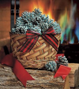 Color Changing Fireplace Pine Cones